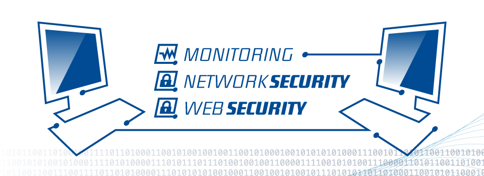 Maroxx Service: Monitoring, Network Security